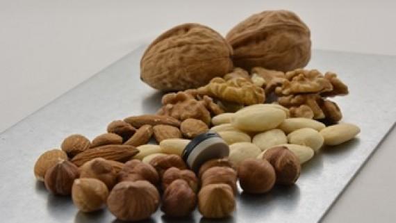 Enregistreur de température Aximicro pour la mesure de la température contre les salmonelles dans les noix