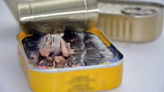ultra flat temperature recorder for sterilizing in jars