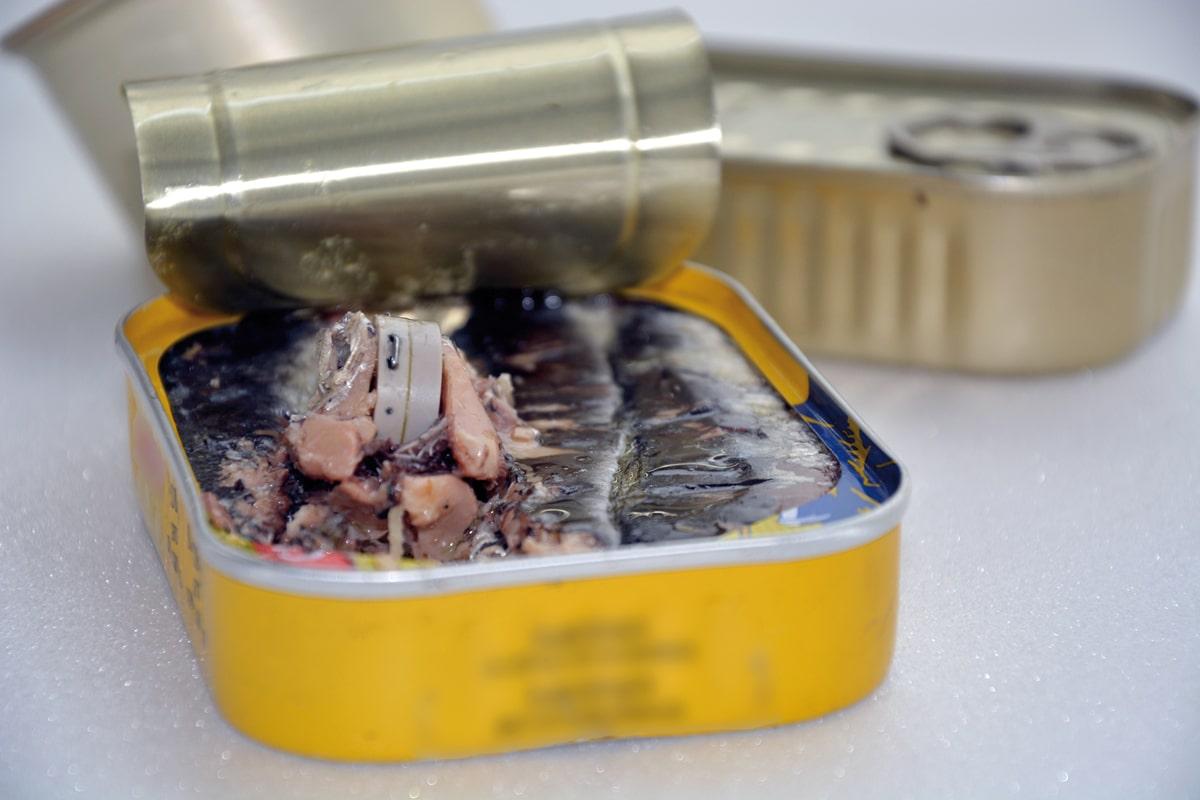 AXImicro enregistreur miniature température dans boîte de sardines